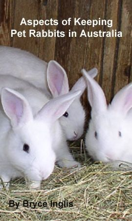 Aspects of Keeping Pet Rabbits in Australia